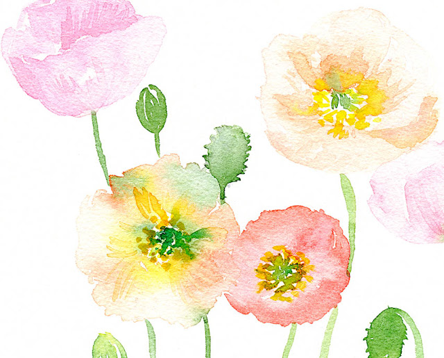 watercolor flowers by Elise Engh