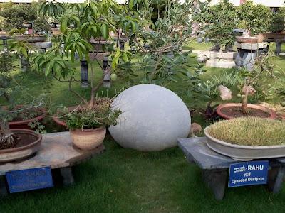 SGS Ashrama Botanical Garden Mysore