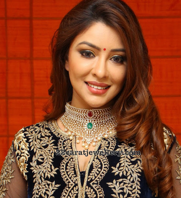 Payal Ghosh in Diamond Chokers