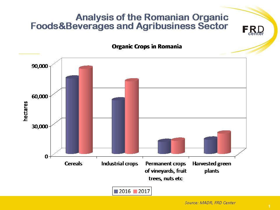 Analysis of the Romanian Organic FoodsBeverages and Agribusiness