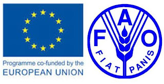 EU, FAO agree to deepen strategic alliance, halve food waste