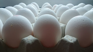 Permalink to Making Feel Of Egg Carton Labels