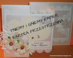 http://ewinkawkrainiepapieru.blogspot.com/2017/11/tniemy-i-gniemy-wyzwanie-2.html