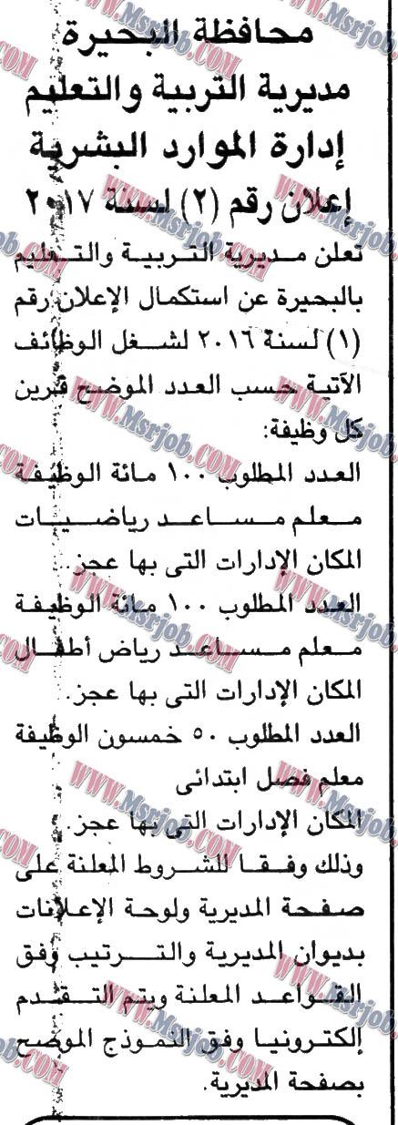 مسابقة ونتيجة وزارة التربية والتعليم