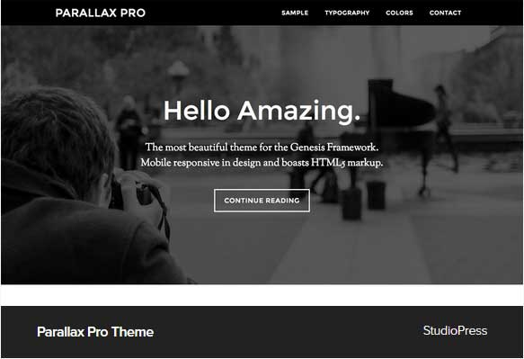 Parallax Pro Theme Award Winning Pro Themes for Wordpress Blog : Award Winning Blog