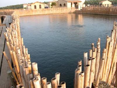 Amicomario cabras e la sua laguna le antiche ricette per for Antiche ricette romane