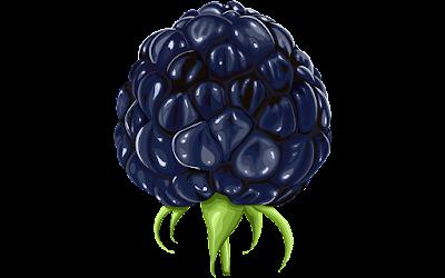 clipart buah blackberry gratis
