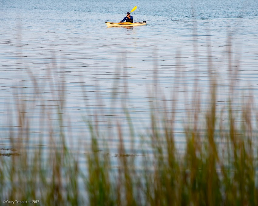 Portland, Maine USA September 2017 photo by Corey Templeton. a kayaker near the mouth of the Fore River (where it passes under Congress Street).