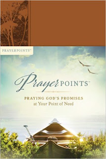 Prayer Points: Praying God's Promises at Your Point of Need by: Ken Petersen (Book Review)
