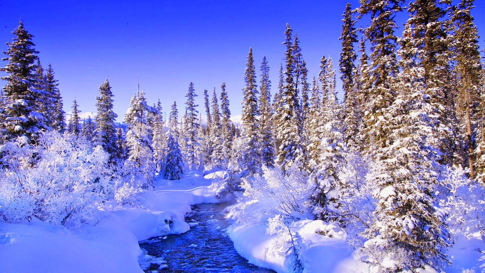 Зимние картинки на рабочий стол