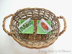 Free Fruit and Plant Match Up Printable