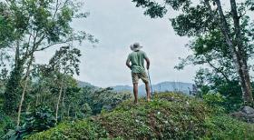 Periyar Tiger Trail - Resorts in Kerala
