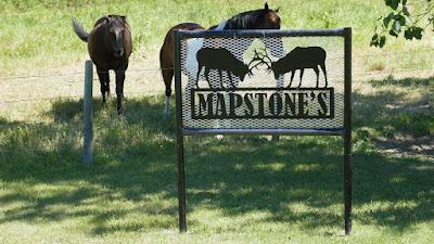 Medicine Hat, sign, Alberta, farm, horses, S.M.R.I.D.