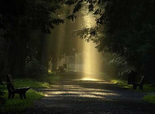 Αποτέλεσμα εικόνας για Όταν το φως σας αυξηθεί, οι αρετές αλλά και τα ελαττώματά σας αυξάνονται