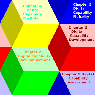 """The New Book """"Digital Capability - Building Lego-Like Capability Into Business Competency"""" Preview"""