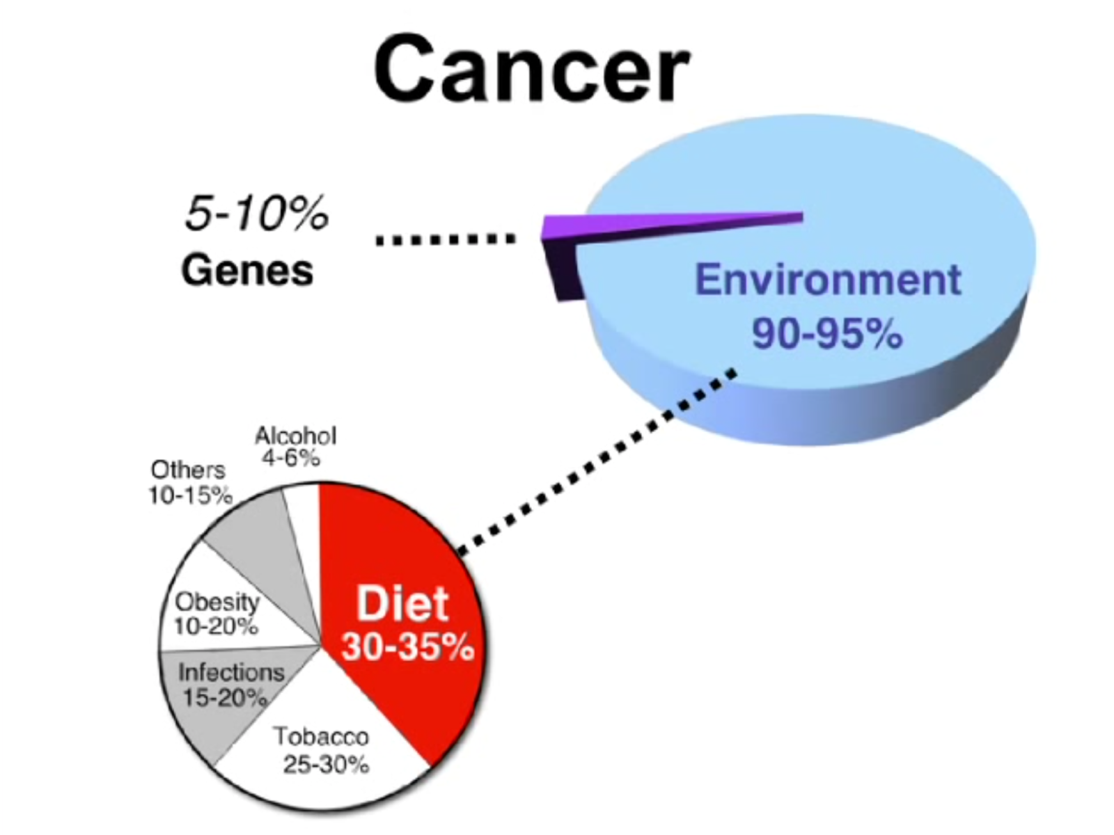 URBAN MALNUTRITION: Cancer Research Pie Chart Showing the Causes of Cancer