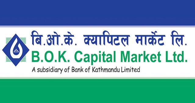 bok capital