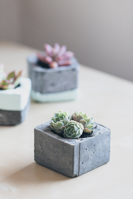 http://erinmadethis.com/diy-concrete-planters/