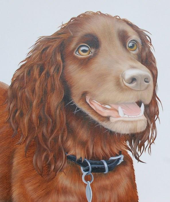 Cocker Spaniel Pet Portrait Oil on Canvas
