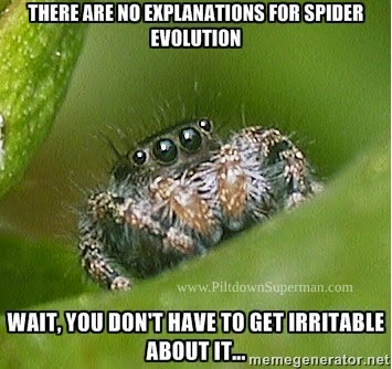 Spiders cause frustration to evolutionists because there is no sign of evolution, yet they have great diversity. They're still spiders, just as they were created to be.