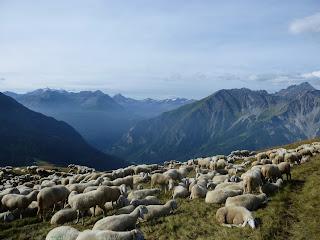 Col Sapin Tour del Mont Blanc
