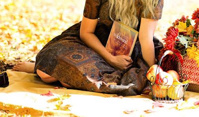 read the church in the wildwood by alanna rusnak