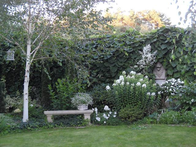 wnętrze ogrodowe, białe kwiaty