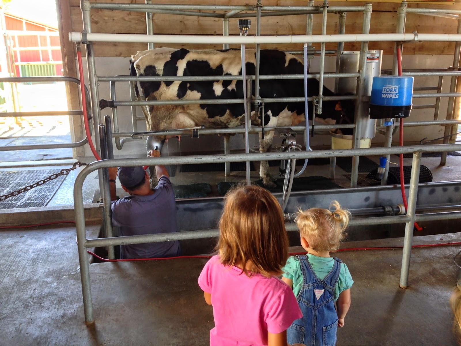 My Homeschooling Journal Farm Field Trip