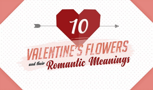 10 Valentine's Flowers and Their Romantic Meanings