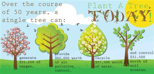 Top Earth Day Fun Facts Recycling