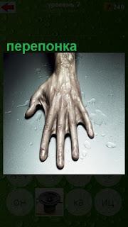 на столе лежит рука с перепонкой между пальцами
