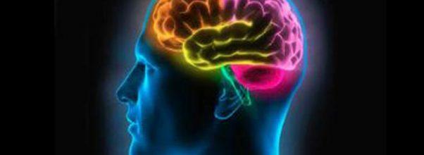 Psikolog Umum : teknik yang digunakan dalam meneliti otak manusia
