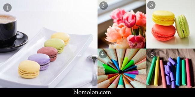 imagen-paleta-colores-1