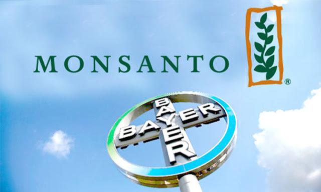 Alertan sobre fusión Bayer Monsanto en Argentina