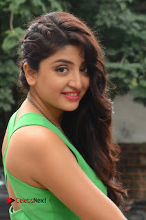 Actress Poonam Kaur Pictures in Green Short Dress at Prayanam Movie Opening  0052