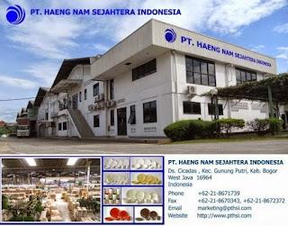 Loker Untuk SMK Operator Produksi PT. Haeng Nam Sejahtera Indonesia Bogor