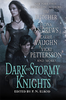 Cover image of Dark and Stormy Knights by P.N. Elrod