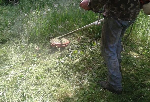 Высокую траву косят только металлическими ножами