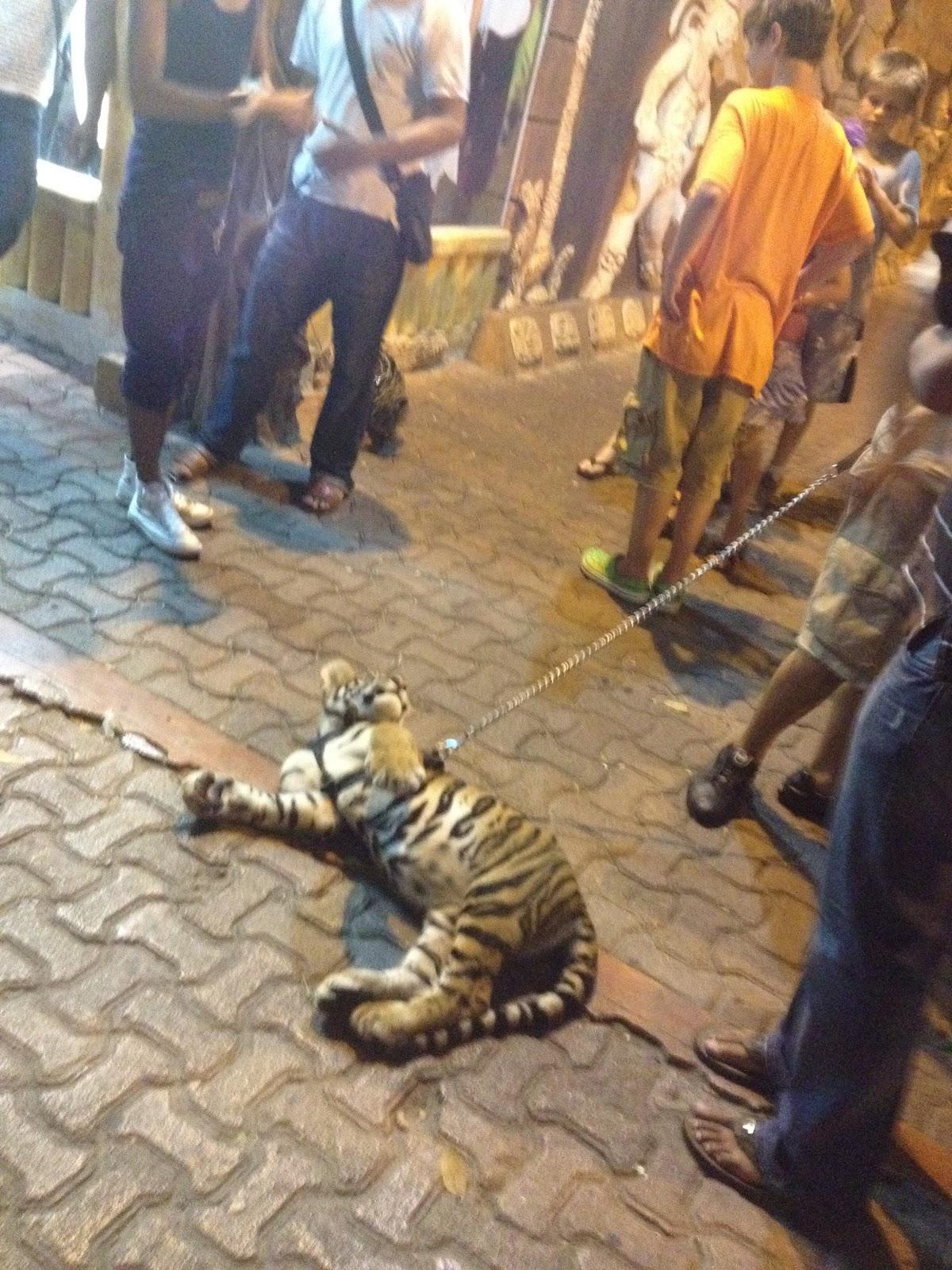 Maltrato animales
