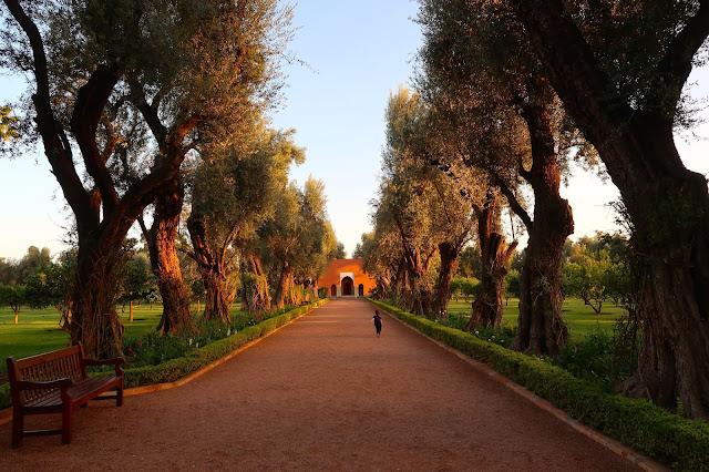 hotel la mamounia marrakech a golpe de objetivo