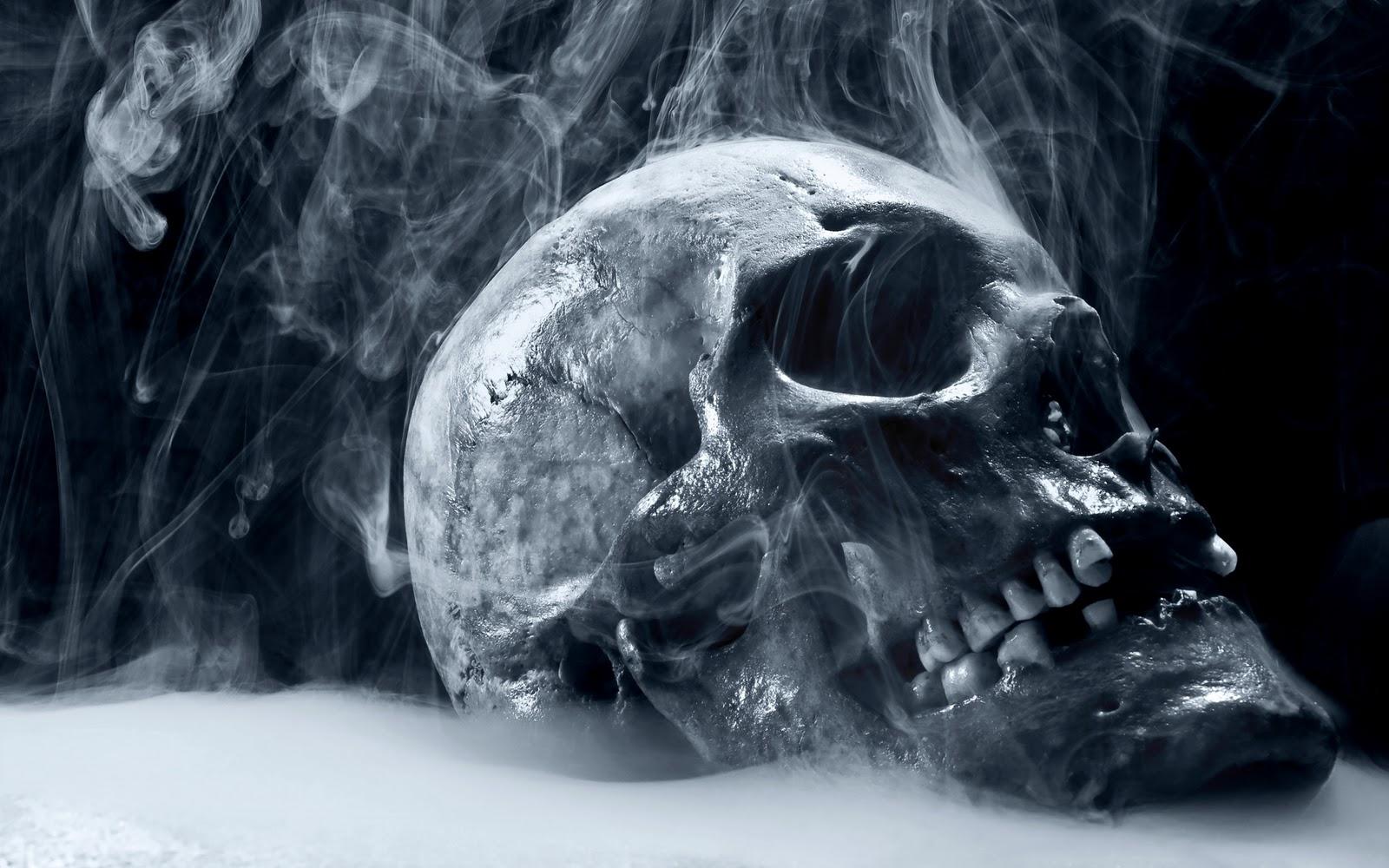 Angel Girl And Skulls Wallpaper Hd Horror Skull