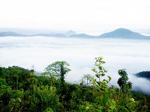 Wisata Bukit Mbanyon (Negeri di Atas Awan Jare Cah Nggalek)