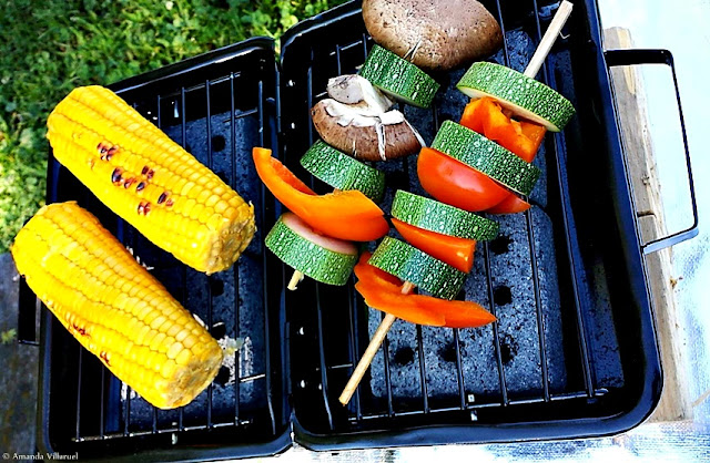 The eco-friendly portable BBQ grill from Barbeco