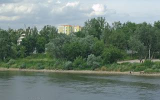 http://fotobabij.blogspot.com/2016/02/puawy-z-mostu-moscickiego.html