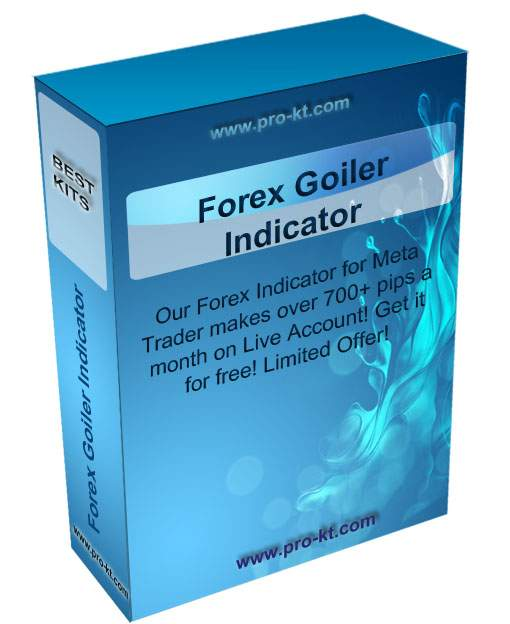 How to use forex goiler indicator