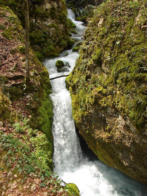 Один из крупных водопадов