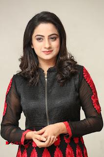 Actress Namitha Pramod Pictures at talabbayi Success Meet  0046