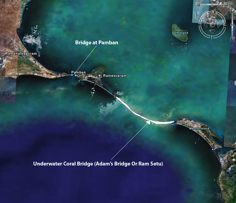 Adam Bridge net worth