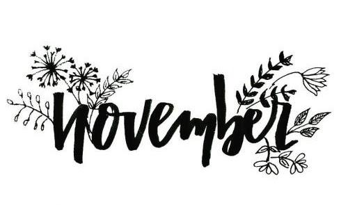 Olá novembro