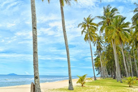 Calm beaches and tropical climate that you will love